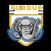 Purdue Fort Wayne logo